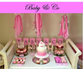 baby-and-co-baby-shower-party-icon