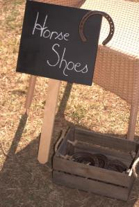 Vintage horse shoes party game wedding
