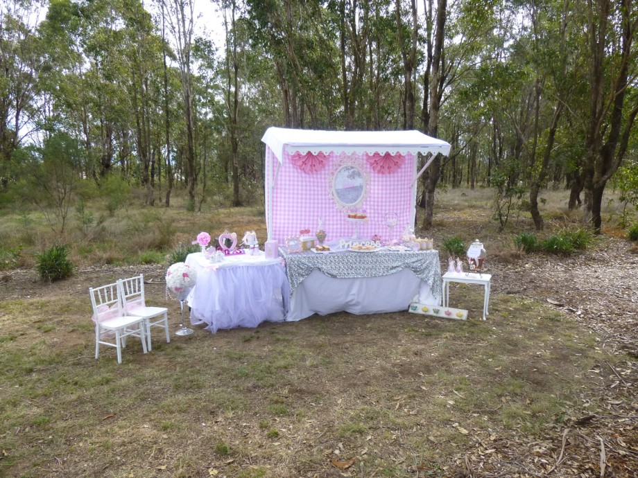 Princess party complete set up-bush background