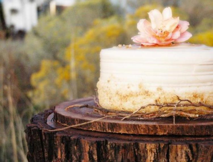 rustic-bush-wedding8