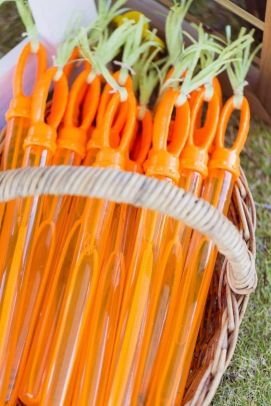 Carrot Bubble Wand-Pinterest