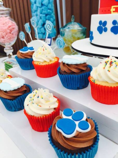 Paw Patrol Party13