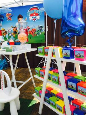 Paw Patrol Party2