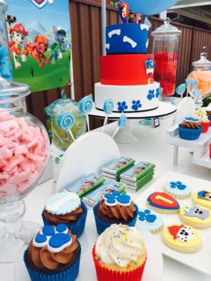 Paw Patrol Party7