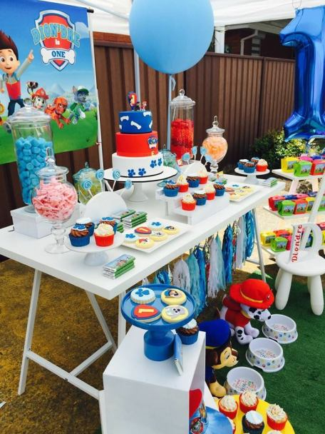 Paw Patrol Party9