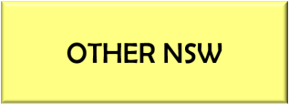 NSW Other Button