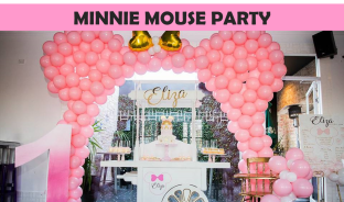 Minnie Mouse Party Icon